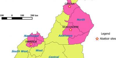 Cameroon showing regions map